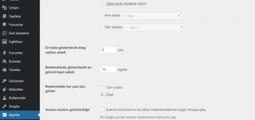 wordpress ana sayfa yazı yazı sayısı değiştirme